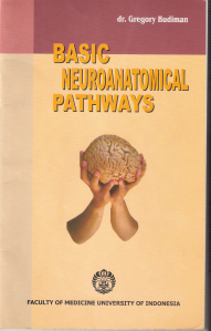 Basic Neuroanatomical Pathways